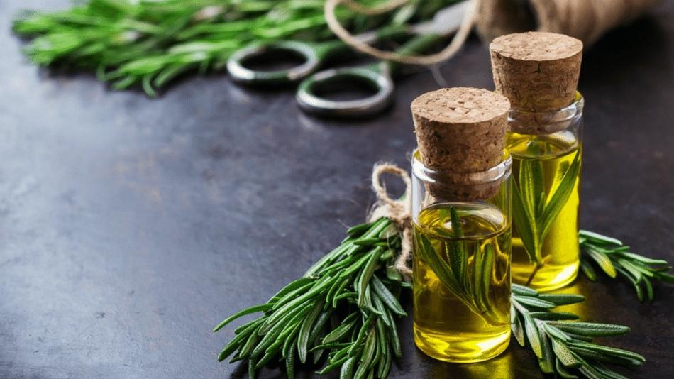 Как эфирное масло розмарина убивает раковые клетки