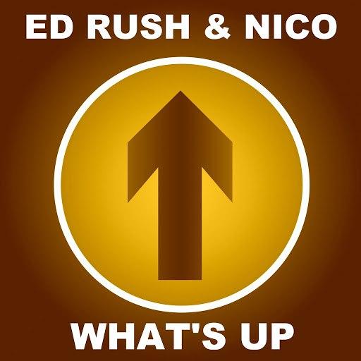 Nico альбом What's Up (2015 Remaster)