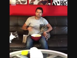Как я смотрю фильмы дома