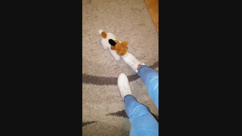 Trample toy dog with white boots part1