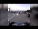 Рекламный ролик для instagram-аккаунта zloy.zayac
