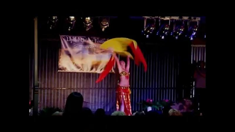 Kalila - Tanec s hodvábnymi vejármi (Belly dance with fan veils) 23621
