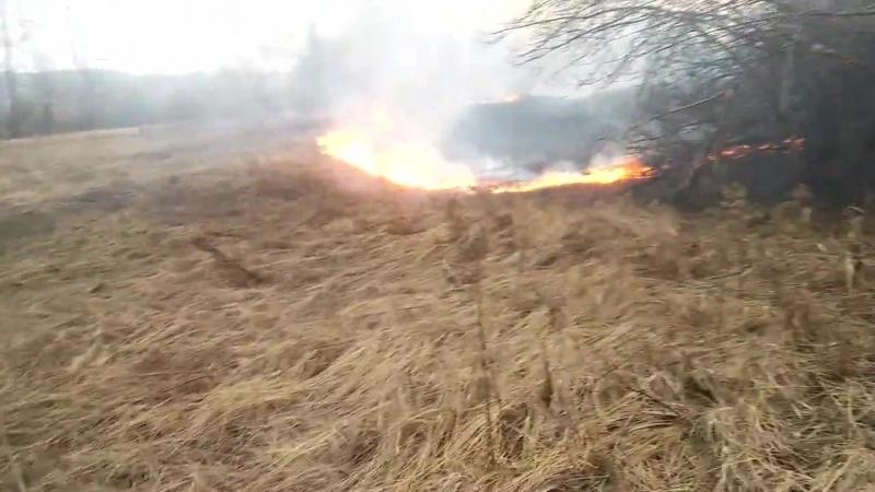 тушу пожар 4
