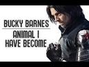 Bucky Barnes - Animal I Have Become
