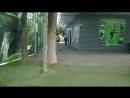 Сестрорецк парк Дубки. 18.08.2018