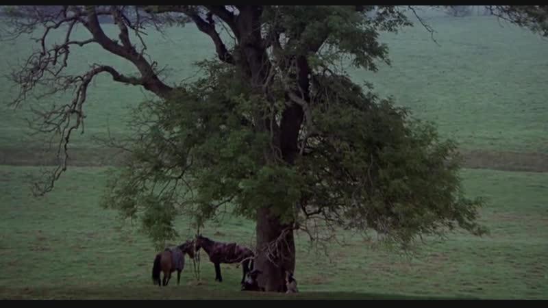 Кентерберийские рассказы 1972 Режиссер Пьер Паоло Пазолини