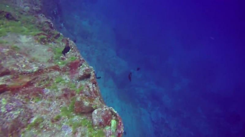 My Scariest Moment Scuba Diving! - Sailing SV Delos Ep. 164