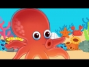 Under The Sea _ Marine and Sea Animals Song for Kids _ ESL for Kids _ Fun Kids English
