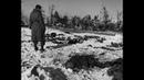 Бойня у Мальмеди — военное преступление, совершённое Waffen SS 17 декабря 1944 года