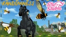 RANDOMNESS ~ Star Stable ~ Kelly Smail