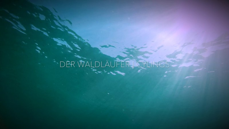 Der Waldläufer | Cylings - Ambient | Chillout | Downtempo