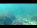 Крымское море Stilidea 03
