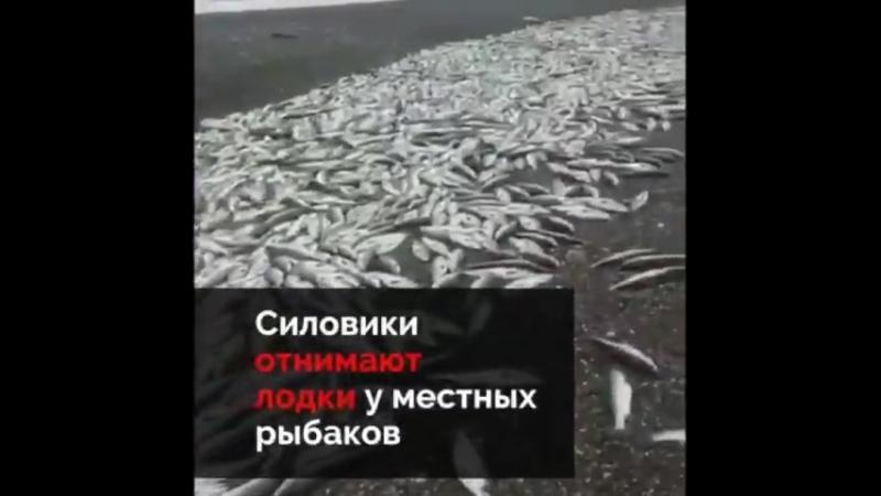 Российский Банковский фашизм поступает именно так