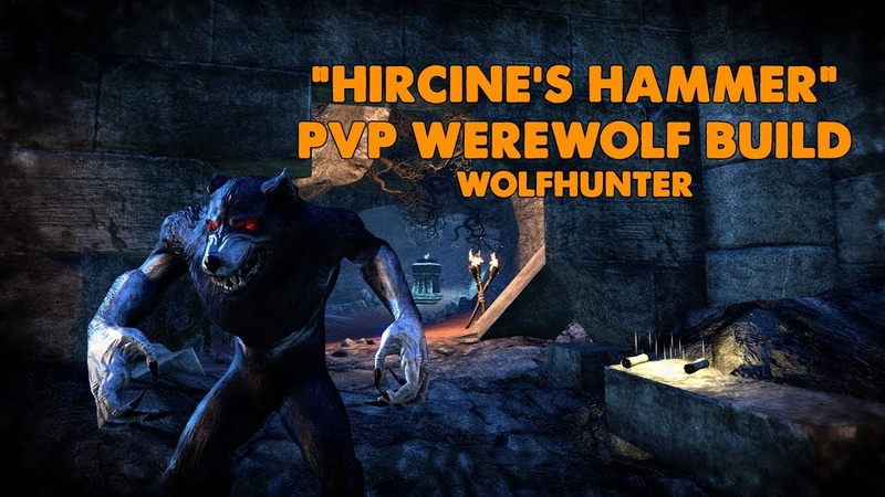 ESO - Hircine's Hammer PVP Werewolf Build - (Wolfhunter)