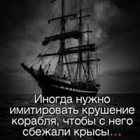 Анкета Сергей Дубровский