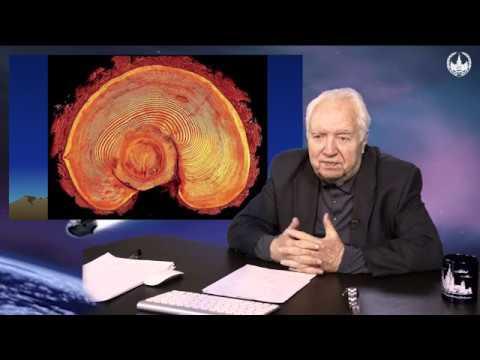 Лекция Метеориты астероиды кометы Их падение на Землю Часть 5