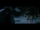 Замёрзшие Встреча с волками
