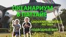 ОКЕАНАРИУМ В ПАТТАЙЕ | UNDERWATER WORLD PATTAYA | 2019