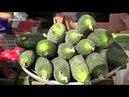 Нітратні чи корисні Які вони свіжі овочі на рівненському ринку