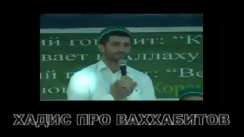 Хадис про Ваххабитов Псевдо Салафиты