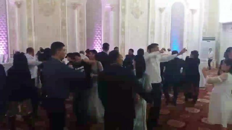 29.09.2018 KINZA салатанатты сарайы