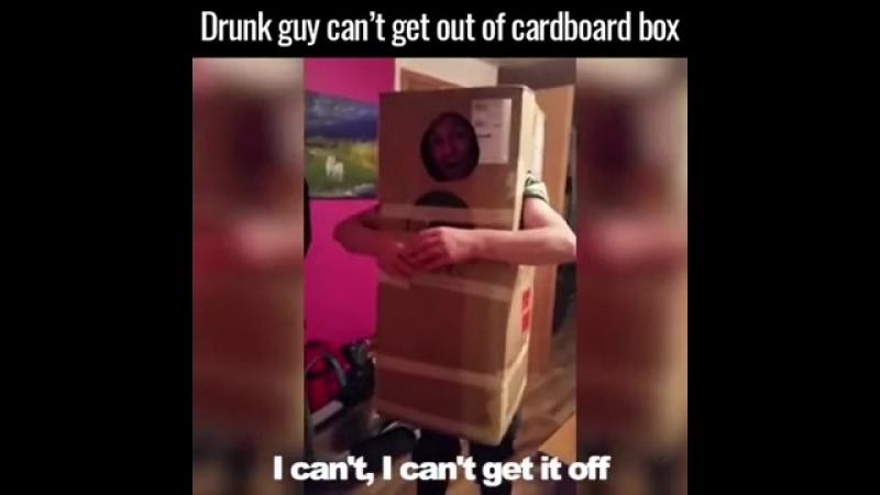 Нажрался залез в коробку агрится