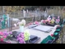 Два брата во время запоя разгромили кладбище в Амурской области