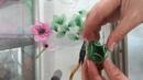 Hoa voan nghệ thuật pipo shop