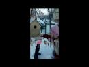 Гимназия1 Покорми птиц зимой