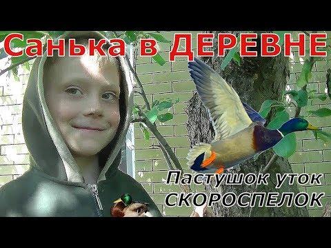 Санька в деревне Пастушок уток СКОРОСПЕЛОК