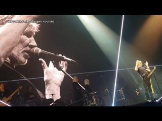 Основатель Pink Floyd назвал «Белые каски» фейковой организацией
