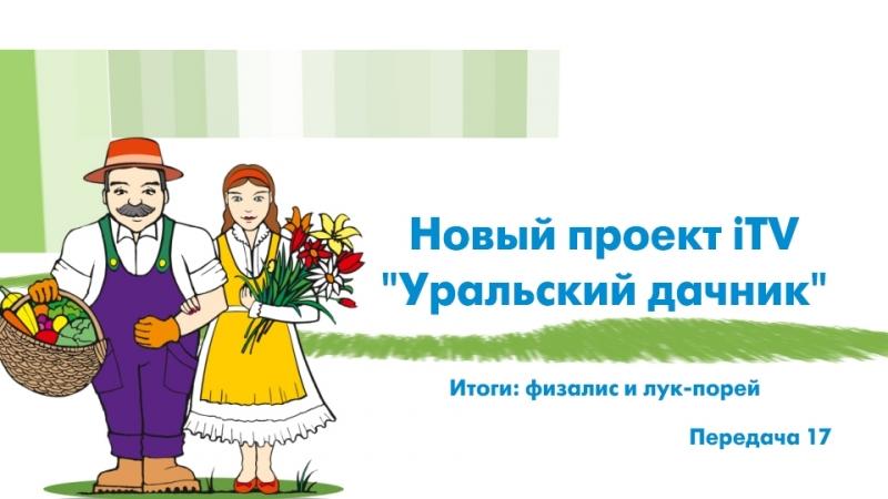 Уральский дачник Итоги физалис и лук порей ITV Миасс 22 сентября 2018