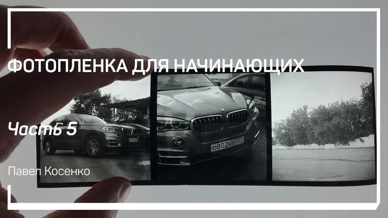 Современные ч/б фотопленки. Фотопленка для начинающих. Павел Косенко