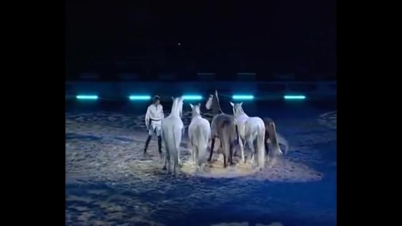 Жан Франсуа Пиньон и его свободные лошади
