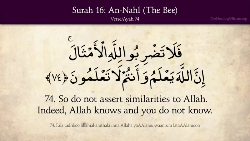 Quran- 16. Surat An-Nahl (The Bee)- ]نحلquran in English اWhat is Quran Quran is the word of God God sent down to the Prophet Mo
