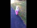 Прогулочка ножками