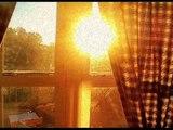David Arthur Brown - Morning Sun