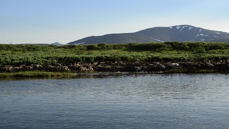 Река Естовис Воркутинский район Полярный Урал