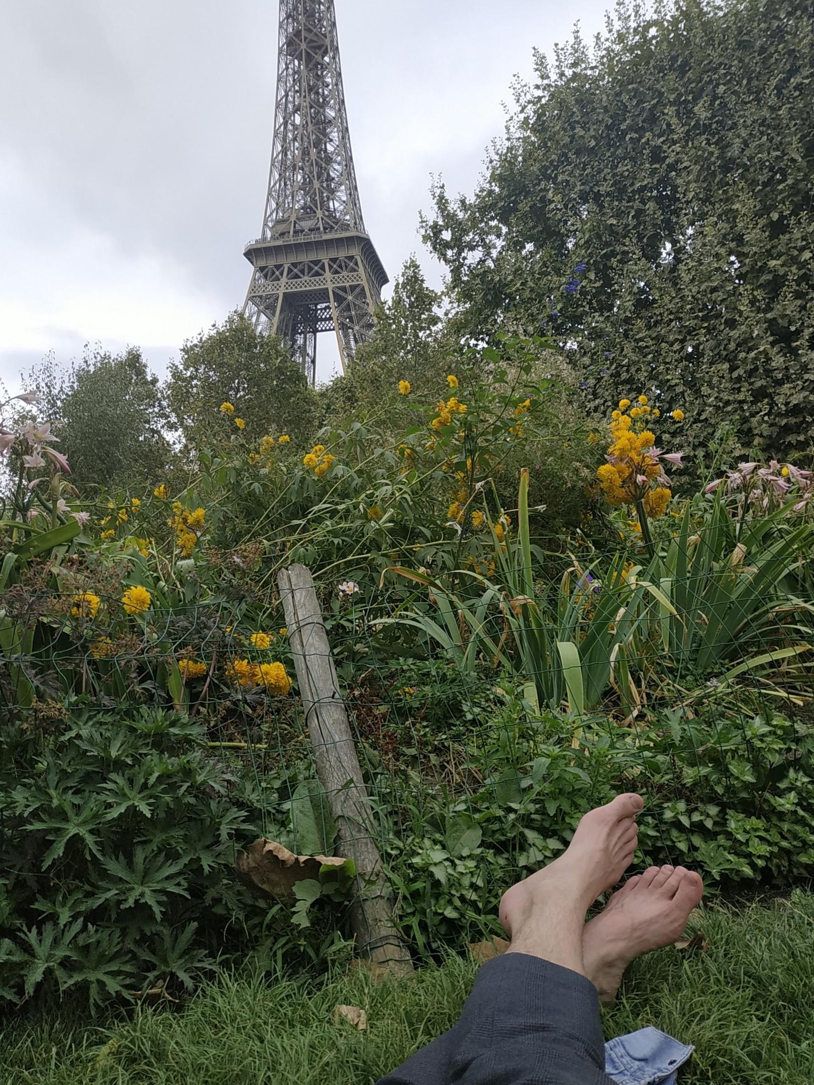 В Париже — работать и учить язык!