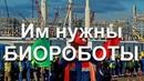 Ужас в Сибири сейчас уничтожают Русский наРОД