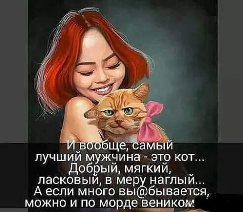 давно не жду не одинокакоты собакидом работа© Ольга Юрьева
