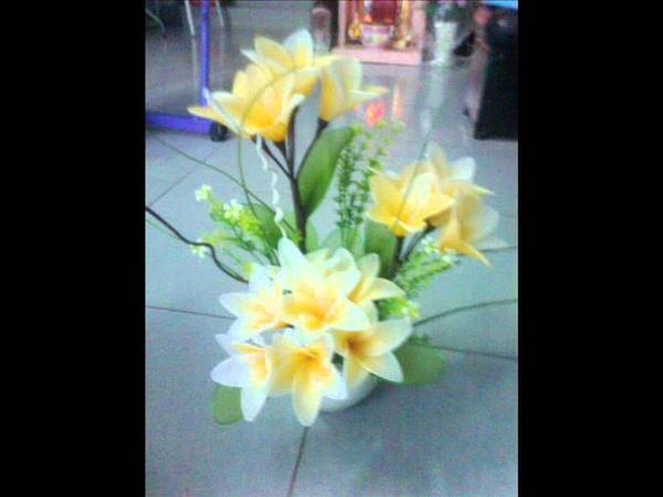 Hoa voan. thuy trang