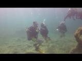 Scuba diving, Cyprus 2018