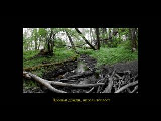 Freak of nature teaser