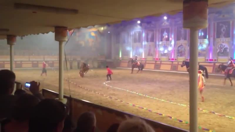 Трагедия в цирке лошадь взбесилась