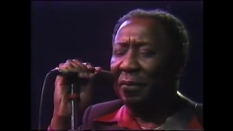 Muddy Waters _ The Living Legends of Blues
