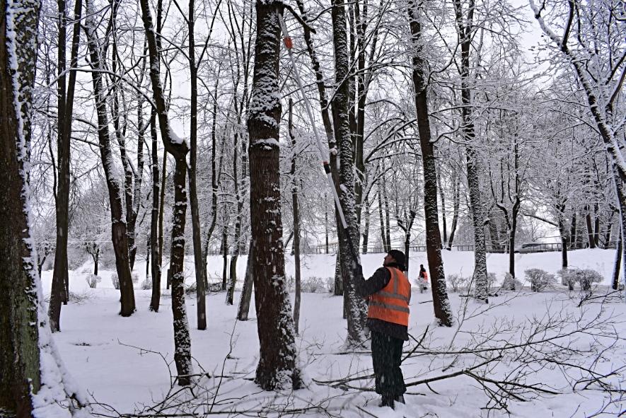 Коммунальщики Советска получили оборудование для обрезки деревьев с земли
