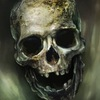 The Pirate: официальная страница игровой серии