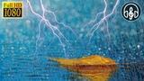 8 Часов Шума Дождя и Звуки Грома. Звуки Природы для Сна, Учебы, Релакса