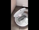 Робот-пылесос забавно общается с людьми. Видео прикол